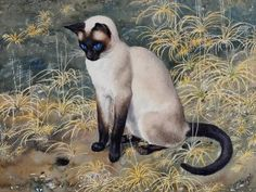 Charles Frederick Tunnicliffe (British, 1901–1979) - Siamese cat sitting amongst grasses