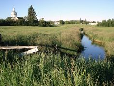 Yellow Creek, SK Coast, Country Roads, Canada, Yellow, Places, Pictures, Photos, Grimm, Lugares