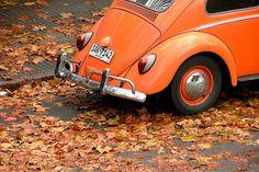 ORANGE Crush. I want one! Tangerine orange VW Vintage Beetle. Autumn leaves.