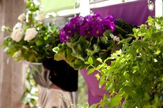 The Green Pockets - wall planter