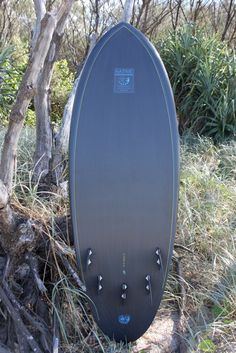 The Alley Fish Fry: Alan's new carbon knee board