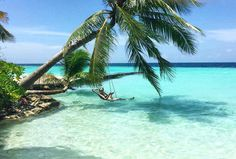Maldives - Tom Allmon