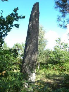 Menhir Quenouille de Gargantuta - Plaudren (56)