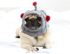 The Newest from All You Need is Pug! Robot Dog Hat by AllYouNeedIsPugShop on Etsy, $28.00 #pug #pugs #pets #petclothing #petfashion #petcostume #dogcostume #puglove #allyouneedispug #doghat #pughat #puglife