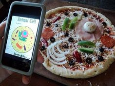 Journey to Excellence: Cells ~ It's What's for Dinner: Animal cell pizza & plant cell cookie :)