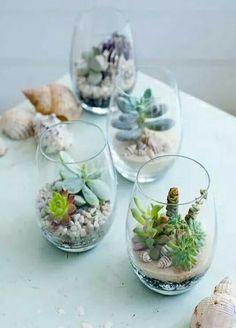 Cute idea for air plants
