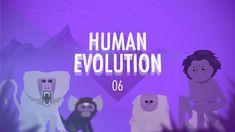 Crash Course Big History #6: Human Evolution