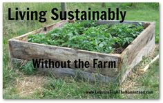 Teaching our kids sustainable living skills without the farm.