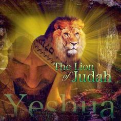 Yeshua Lion of Judah.                                                                                                                                                     More