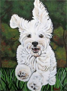 Items similar to CUSTOM Pet Portrait maltipoo on a stretched canvas on Etsy Pointe Shoes Drawing, Animal Paintings, Animal Drawings, Frise Art, Yellow Lab Puppies, Dog Corner, Drawing Sketches, Drawing Drawing, Figure Drawing