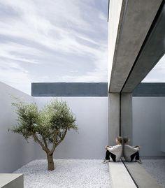 Una casa, un patio, un olivo... por ODOS Architects | Interiores Minimalistas