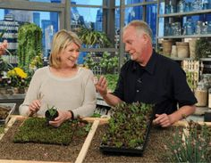 Martha and Ed Snodgrass on The Martha Stewart Show airing 4.20.12; Photo Courtesy of The Martha Stewart Show