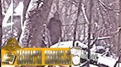 Bigfoot Hotspot Radio - SC EP:41 Deathbed Confession - I shot Sasquatch ...