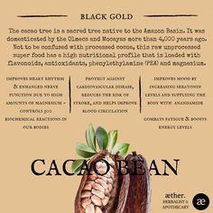 Cacao Benefits, herbal medicine, apothecary, plant medicine, adrenals, chocolate benefits Magic Herbs, Herbal Magic, Cacao Benefits, Chocolate Benefits, Healing Herbs, Medicinal Plants, Natural Herbs, Natural Healing, Herbal Remedies