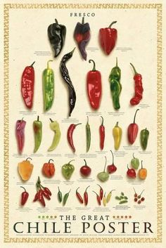 Chile Poster Fresco The Great Mark Miller Fresh Peppers Chili Food Cook Kitchen Prints, Kitchen Art, Kitchen Posters, Chile Picante, Types Of Peppers, Food Charts, Barbacoa, Stuffed Hot Peppers, Clipart