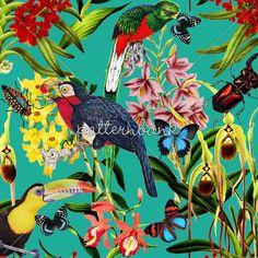 Jungle Book by Sofia Perina-Miller - ❣ Relicário ❣ - makemyworldburn.tumblr.com