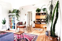 12 Gorgeous Spaces That Prove Houseplants Are Where It's At via @domainehome