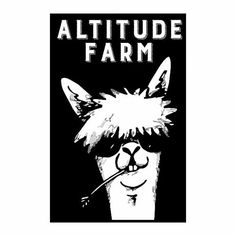 Browse unique items from AltitudeFarmStore on Etsy, a global marketplace of handmade, vintage and creative goods.