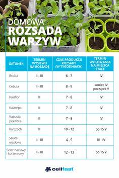 Gardening, Flat, Tips, House, Balconies, Garten, Bass, Advice, Home