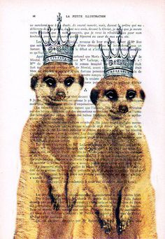 Acrylic paintings Illustration Original Prints Drawing Giclee Posters Mixed Media Art Valentine's Day: 2 Royal Meerkats. $9.00, via Etsy.