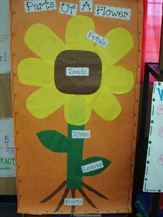 Mrs. Plant's Press: Parts of a flower