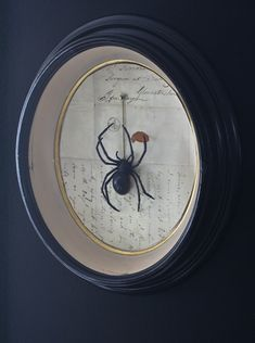 framed spider - wall art / creepy Halloween decoration