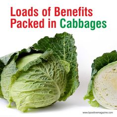 Check out Reasons to Eat More Cabbage - Its packed with Amazing Health Benefits #cabbage #healthyfood #benefits
