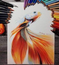 Find images and videos about art, drawing and animal on We Heart It - the app to get lost in what you love. Fish Drawings, Pencil Art Drawings, Art Drawings Sketches, Colorful Drawings, Cartoon Drawings, Cool Drawings, Colored Pencil Artwork, Color Pencil Art, Animal Sketches