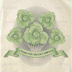 vintage cabbage illustration - Google Search