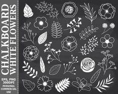 Chalkboard Clipart, Chalkboard Doodles, Chalkboard Markers, Chalkboard Lettering, Chalkboard Designs, Leaf Flowers, White Flowers, Cactus Flower, Bedroom Decor