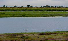 Chobe Nationalpark Botswana und Victoriafalls Zambia-21