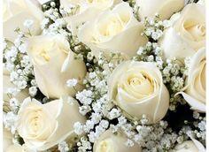 Ramos de Flores - as flores têm significados próprios - Aparentemente, escolher uma cesta ou ramos de flores é uma tarefa comum, uma vez que em contexto social, já se oferecem flores. É frequente referir-se
