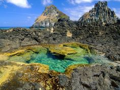 Tide Pool - Fernando de Noronha, Brasil    Literally the most beautiful place I've ever been to in my whole life.