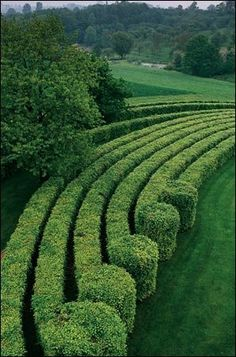 Hedges and topiary with a wow factor! Garden Hedges, Topiary Garden, Garden Art, Garden Landscape Design, Garden Landscaping, Formal Gardens, Outdoor Gardens, Amazing Gardens, Beautiful Gardens