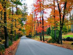 Drive through New England& scenic country roads on a fall foliage road trip adventure. Indian Summer, Fall Foliage Map, Foliage Tours, Cool Places To Visit, Places To Go, New England Fall Foliage, New England States, Road Trip Adventure, New Hampshire