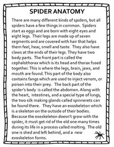 Get ready for Halloween with this unit! Spiders and insects are amazing creatures! Help kids to learn about them with this engaging mini-unit that includes reading passages with comprehension pages, crossword puzzles, task cards, story starters, and more! Reading Resources, Reading Skills, Reading Passages, Reading Comprehension, Learning Centers, Literacy Centers, Acting Monologues, Balanced Literacy, Crossword Puzzles