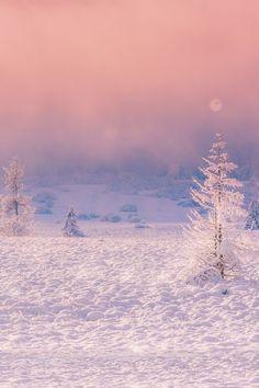 Follow me on Pinterest @ LifeInBlonde ✨🇬🇧💜 ❄️🌬 #WinterWonderland #Snow #Winter #Lapland #Arctic