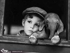 Enfant et éléphanteau