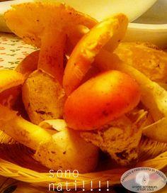 Crepes ai funghi....sono nati! Porcini e Ovoli http://graficscribbles.blogspot.it/2015/10/crepes-ai-funghi-porcini-ovoli.html #crepesaifunghi   #ricetteconfunghi   #ricetteporcini   #ricettadelgiorno   #ricetteovoli