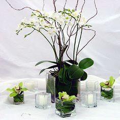 potted orchids with square votives