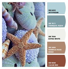 Paint colors that reflect the miracle of the sea, starfish, sea urchins, shells, etc.