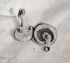 Pen and Ink - Mushrooms Sketchbook Inspiration, Art Sketchbook, Drawing Sketches, Ink Drawings, Sketching, Pen And Wash, Ink Wash, Vegetable Drawing, Nature Sketch