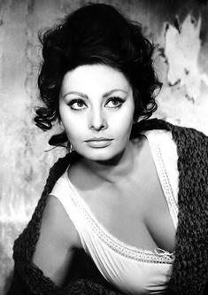 Classic Actresses, Hollywood Actresses, Beautiful Actresses, Hollywood Stars, Old Hollywood, Loren Sofia, Sophia Loren Images, Lady L, Italian Actress