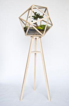 Designer Idee - originelles Terrarium für Ihre Bonsai Bäume von Fort Standard  - #Dekoration
