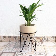verjas Unique Home Decor - Thinking Outside the Box Home accents and surroundings today offer much m Blue Wall Decor, Diy Wall Decor, House Plants Decor, Plant Decor, Tall Plant Stands, Iron Furniture, Coastal Decor, Planting Flowers, Farmhouse Decor