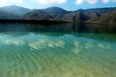 La Ciénaga. Henri Pittier National Park. Venezuela.