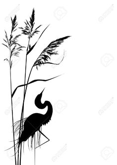 vecteur de fond avec des roseaux et le héron en noir et blanc