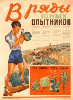 Become An Industrial Plant Grower USSR 1930 - original vintage Soviet propaganda poster listed on AntikBar.co.uk