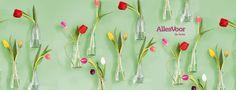 Een paar lege flesjes, ijzerdraad en één bosje tulpen. Meer heb je niet nodig om een stukje muur om te toveren tot een lente-kunstwerk.