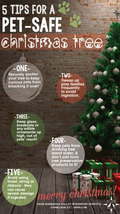 Christmas trees can be pet-safe! Use QVVH's veterinary tips to keep your cat or dog safe around your Christmas tree. www.qvvh.com